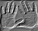 Miche Meizner hands